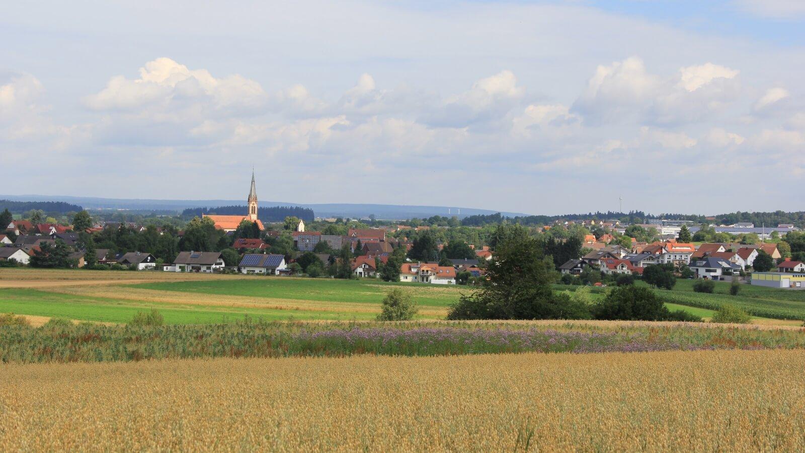Ortsansicht von Winzeln aus Richtung Waldmössingen